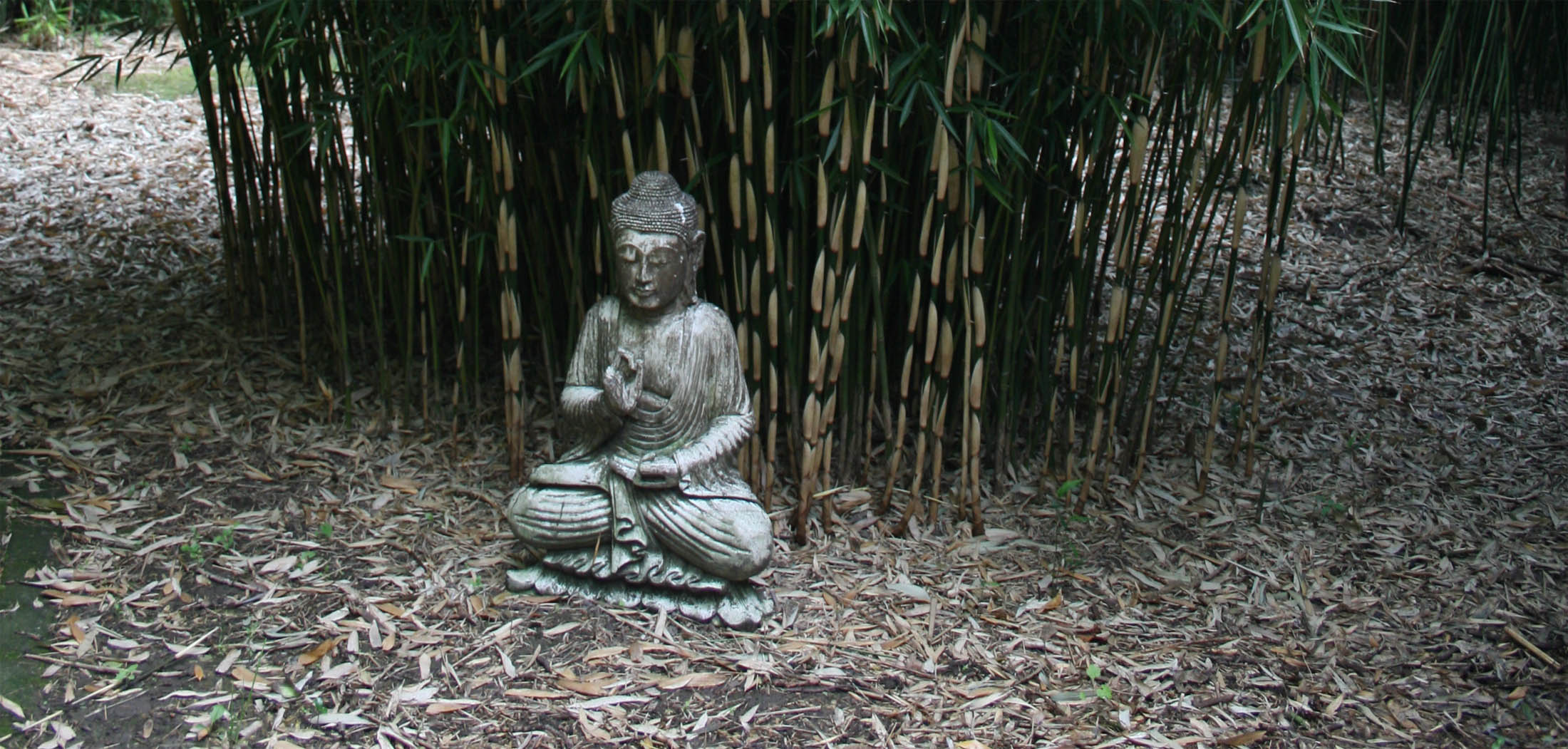 bamboepark
